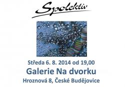 Spolektiv v Galerii 6. 8. 2014, České Budějovice
